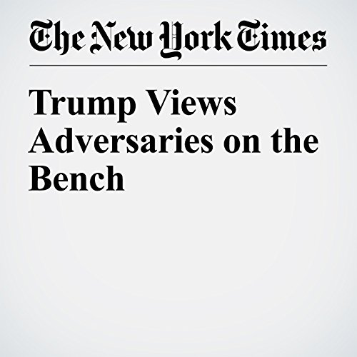 Trump Views Adversaries on the Bench audiobook cover art