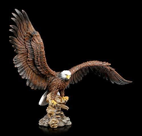 Figuren Shop GmbH Weißkopfseeadler mit ausgebreiteten Flügeln | Adler-Dekofigur, Handbemalt