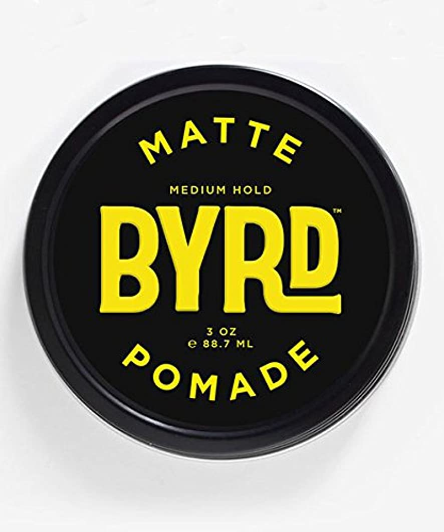 のぞき見主観的あいまいなBYRD(バード) マットポマード 85g