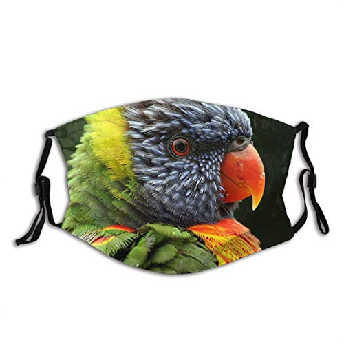 Mundschutz Face Cover Rainbow Lorikeet Parrot Birds Australian Birds Portrait Nature Wildlife Balaclava Unisex Reusable Mouth Cover for Outdoor Face Decorations