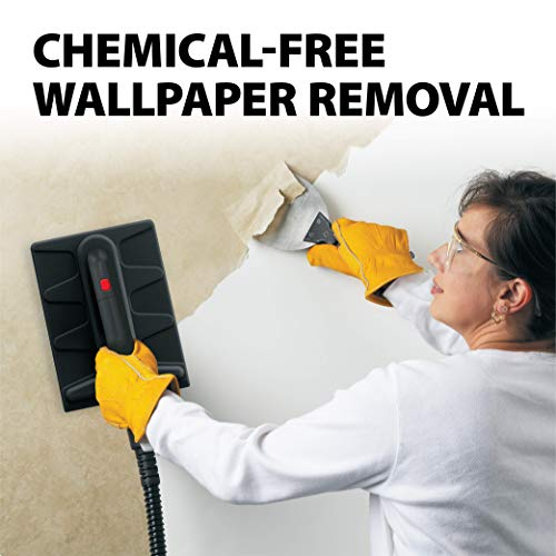 Wagner 0282014 915 On-Demand Steam Cleaner and Wallpaper Removal