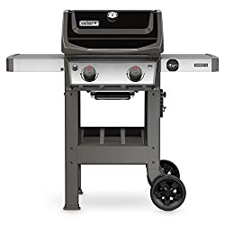 professional Weber 44010001 Spirit II E-210 LPG grill, 2 burners, black