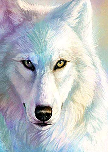 AIRDEA Full Drill Square 5D Diamond Painting Kits for Adults, White Wolf Rhinestone Embroidery Cross Stitch Supply Arts Craft Canvas Wall Decor