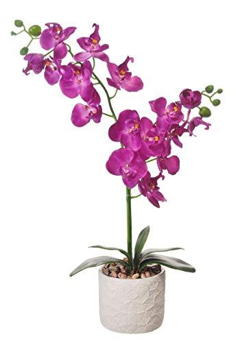 Home Decor 4 U - Orchidea artificiale, doppia tarma, pianta artificiale, orchidea con vaso, centrotavola di fiori artificiali, orchidea finta, decorazioni, piante finte, fiori artificiali Magenta