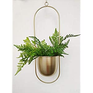 RISEON Boho Gold Metal Plant Hanger,Metal Wall and Ceiling Hanging Planter, Modern Planter, Mid Century Flower Pot Plant Holder, Minimalist Planter for Indoor Outdoor Home Decor (Oval Shape, Gold)