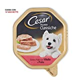 Cesar - Recetas Clásicos - Recetas clásicas de Comida para Perros - Paté de 150 gr - 14 bandejas