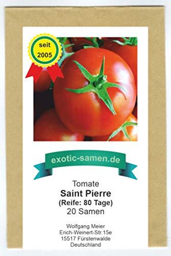 Saint Pierre - rote Gourmet-Tomate - 20 Samen