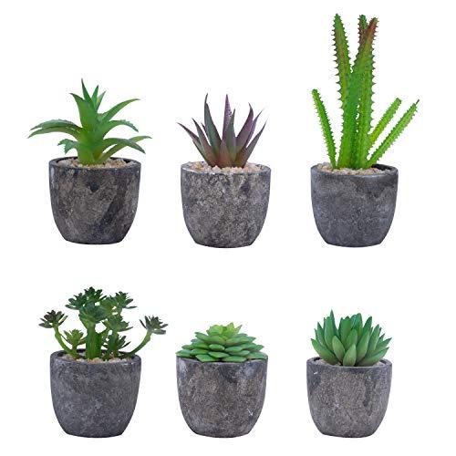 Kunstpflanzen Set (6 Stk) - Mini Plastik Deko Sukkulenten Kaktus Pflanzen im Topf - Kunstblumen Kakteen mit Blumentopf als Wohnaccessoire, Büro Pflanze, Bad, Tischdeko, Hochzeit, Dekoration