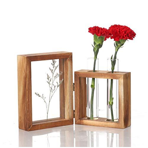 VNEIRW 3D Vasen Deko Hydroponische Glasvase mit Reagenzgläser für Blumen und Fotorahmen, Hängevase Reagenzglas Vintage Pflanze Dekorationen für Tischdeko Wohnzimmer Büro Party Hochzeit (B)