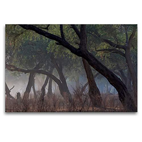 Premium Textil-Leinwand 120 x 80 cm Quer-Format Morgenstimmung in Mana pools | Wandbild, HD-Bild auf Keilrahmen, Fertigbild auf hochwertigem Vlies, Leinwanddruck von Gerald Wolf