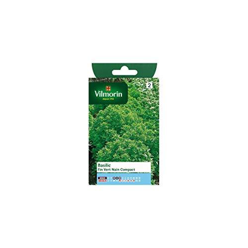 Vilmorin - Sachet graines Basilic fin vert nain compact