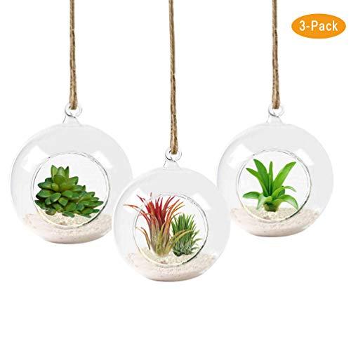 K KYMAKE Stylish Desktop Terrariums Glass Flowerpot Bulb Handmade high Borosilicate Creating a New Environment for Your Desktop Life 3 Pack Three