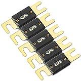 ZHITING 5 Pcs Fusible ANL de 150 Amperios Placa Dorada de Fusibles hoja Fuse para Sistema de Audio de Coches y Vehículos