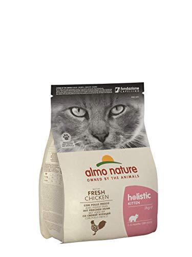 almo nature | Pienso para Gatos, Gatitos Pequeños Holistic Kitten Pollo y Arroz (2 kg). Comida para Gatos Junior Natural. Alimento Balanceado Seco, Alto en Proteínas.