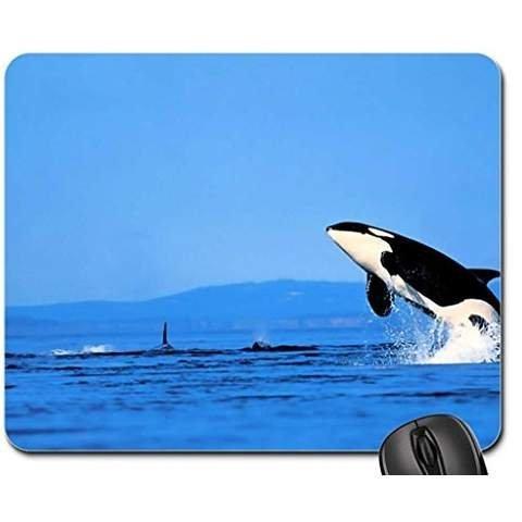 Orca saltando fuera del el mar alfombrilla de ratón, alfombrilla de ratón (de las ballenas Mouse Pad)