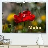 Mohn Premium hochwertiger DIN A2 Wandkalender 2022 Kunstdruck in Hochglanz  Mohnbluete die fluechtige Gartenschoenheit. Monatskalender 14 Seiten