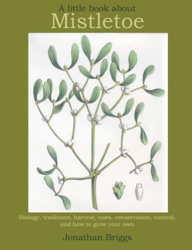 A Little Book About Mistletoe (English Edition)