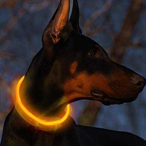 Fttouuy Blinkender LED Hundehalsband, LED Leuchthalsband USB wiederaufladbar Längenverstellbar- Haustier Sicherheit Kragen für Hunde und Katzen- 3 Modus