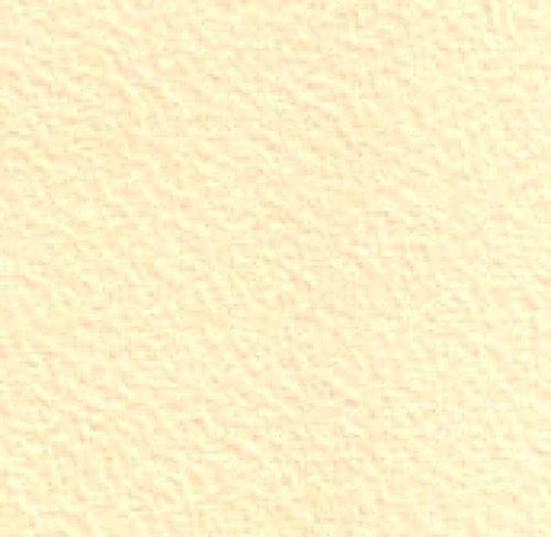 Legion Bockingford Watercolor Paper, 140lb. Cold Press, 22 X 30 inches, Cream, 1 Sheet (I98-BOKTCR140)