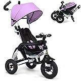 6 in 1 Triciclo Passeggino per Bambini Triciclo con guardrail staccabile, tettuccio regolabile, imbracatura di sicurezza, pedale pieghevole, custodia, freno, design ad assorbimento degli urti