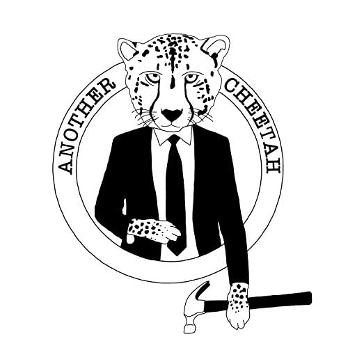 Another Cheetah