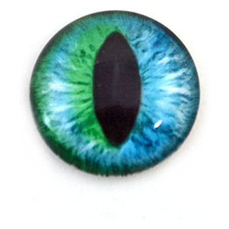 Cat Dragon Eyes Round Glass Cabochon Flatback Photo Jewelry Making Finding Cameo