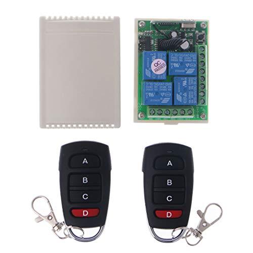 Baodanjiayou - Módulo Receptor RF inalámbrico con 2 transmisores, 24 V, 4 Canales