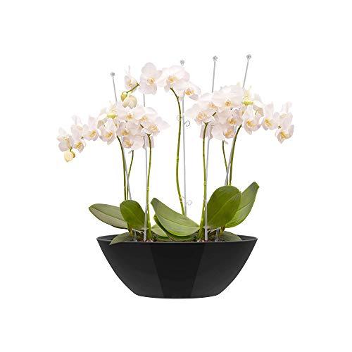 Elho Brüssels Diamond Oval bloempot wit Flowerpot. 20 cm metallic zwart.