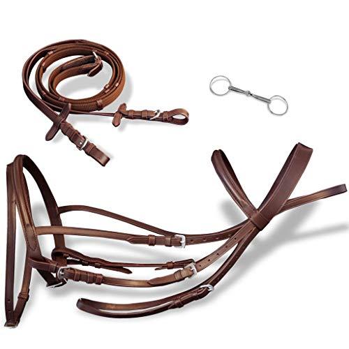 tidyard Leder Trense Trensenzaum mit Zügeln und Gebiß braun Pony | Zaum und Zügel aus hochwertigem