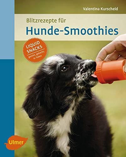Blitzrezepte für Hunde-Smoothies: Liquid Snacks – gemixt, gekocht, in Tuben