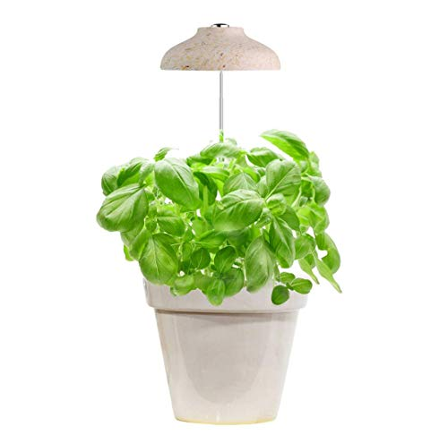 GrowLED LED Umbrella Plant Grow Light, Herb Garden, Height Adjustable, Automatic Timer, UL Adapter Included, Ideal for Plant Grow Novice Or Enthusiasts, Various Plants, DIY Decoration, Wood Pattern