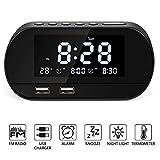 Best Radio Alarm Clocks - Alarm Clock Radio,Bestimulus Digital Alarm Clock with USB Review