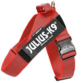 Julius K9 IDC Color Gray Belt Harness for Dogs Size 1 Red Gray product image