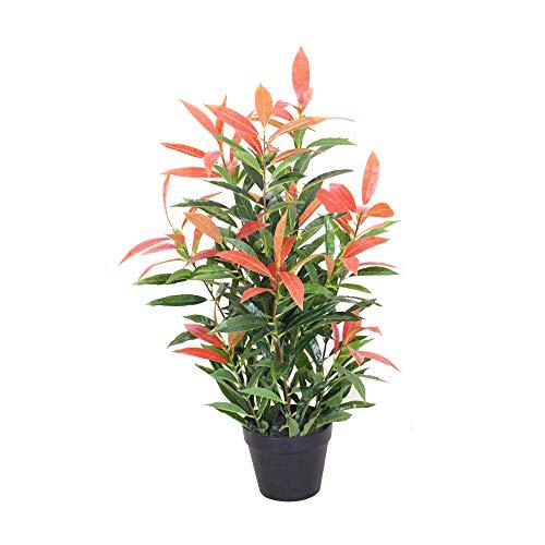Jellywood Glanzmispel (Photinia) Kunstbaum Kunstpflanze Künstliche Pflanze Deko 120cm