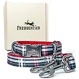 Freudentier Correa para perros (2 m) + collar para perros en el juego, colección Edinburgh con cierre antracita y caja de regalo