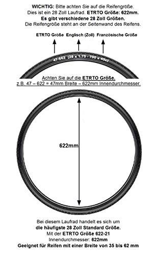 REDONDO 28 Zoll Hinterrad Laufrad Kasten Felge + 7 fach Shimano Kranz Schwarz - 2