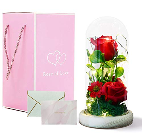 Beauty and The Beast Rose, Enchanted Rose in Luxury Glass Dome with Wooden Base and Elegant Gift Box,with LED Warm Light and Greeting Cards,for Mother's /Father's Day,The Best Gift for Festiva (red)