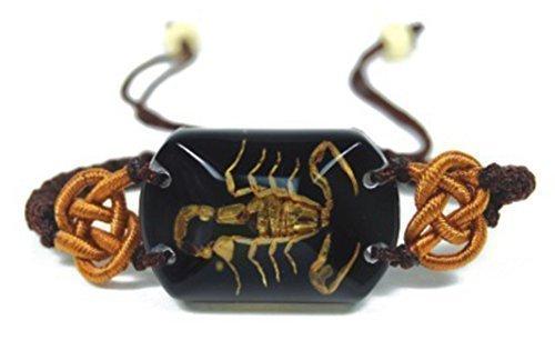 Echte Gouden Schorpioen - Armband ZWART Insect Specimen Bedel - LC1603