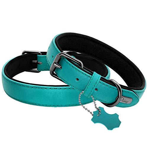 LYDCX Collar De Cuero Real para Perro, Collares Acolchados para Identificación De Perro, Accesorios para Perros Pequeños Medianos Grandes Pitbull Bulldog