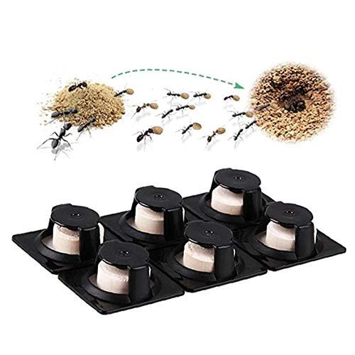 Case&Cover 6pcs Killer Cebo Hormigas del repulsivo Trampa Control de plagas eficaces...