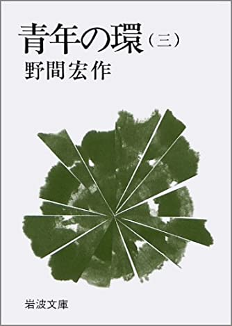青年の環 3 (岩波文庫 緑 91-5)