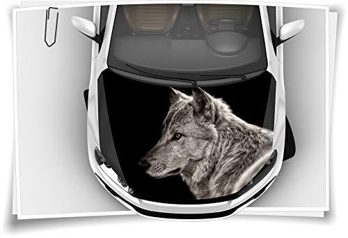 Medianlux Wolf Wildnis Schwarz Wölfe Motorhaube Auto-Aufkleber Steinschlag-Schutz-Folie Airbrush Tuning Car-Wrapping Luftkanalfolie Digitaldruck Folierung