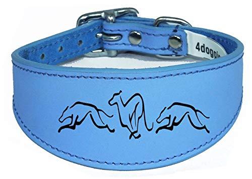 4doggies Hundehalsband, Leder, für Windhunde, Halsband, gepolsterte Rückseite, gravierter Hund