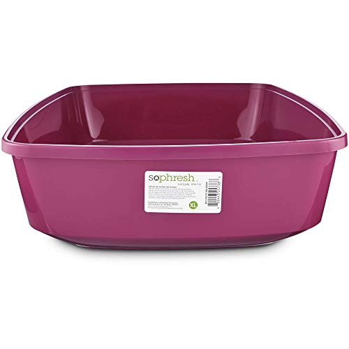 So Phresh Mulberry Open Cat Litter Box, X-Large