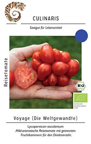 20 Samen Reisetomate – Bio Saatgut von Culinaris