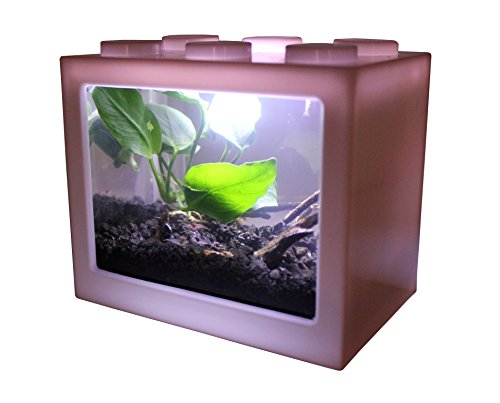 AquaticHI Nano Tank, Extra Small, Mini Desktop Aquarium/Planted Tank/Terrarium/Fish Tank, Perfect for The Kids, Office or Home for Small Betta Fish, Shrimp, Insects and Succulents (White)