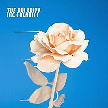 The Polarity I