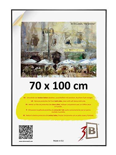 3-B Bilderrahmen Alu Poster Brushed - Posterrahmen mit Polyesterglas und Schutzverpackung - Schwarz matt - 70x100 cm (B1)