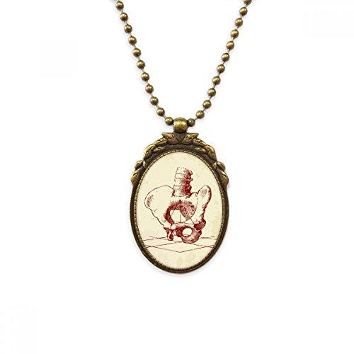DIYthinker Human Skeleton Sketch Hip Spine Antique Brass Necklace Vintage Pendant Jewelry Deluxe Gift