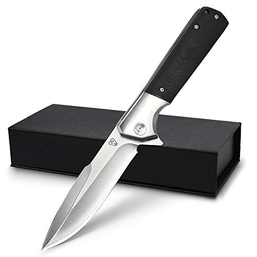 NedFoss Folding Pocket Knife: Gentleman's Knife Ball Bearing Pivot, Locking Liner, Glass Reinforced Fiber Handle with Pocket Clip (B-Beast Cavalry)